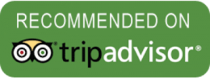 tripadvisor-4and2wheels